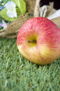 Free Apple On Green Grass Stock Images - 34781704