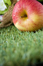 Free Fresh Apple On Grass Stock Image - 34781861