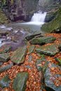 Free Autumn Waterfall Royalty Free Stock Images - 34785639