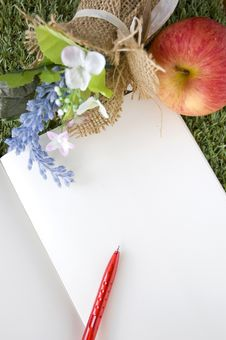 Free Blank Page Of Book With Red Pen Stock Images - 34781754