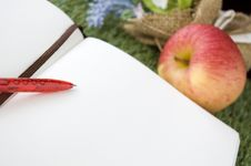 Free Close Up Red Pen On White Page Royalty Free Stock Image - 34781836