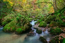 Free Creek Deep In Mountain Forest Royalty Free Stock Photo - 34788565
