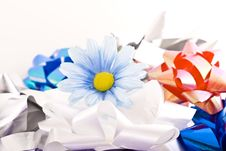 Free Composition With Flowers. Stock Images - 3481784