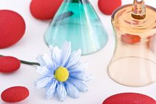Free Composition With Flowers. Stock Photography - 3481802