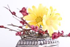 Free Composition With Flowers. Royalty Free Stock Photos - 3481818