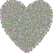 Free Flowers Heart Royalty Free Stock Photo - 3481985