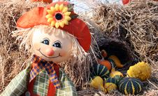 Free Scarecrow Stock Image - 3482711