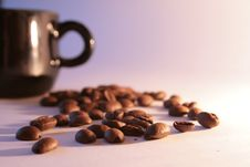 Free Still Life. Coffee, Cup Stock Image - 3483001