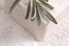 Free Milk Soap And Fresh Herbs Royalty Free Stock Images - 3483839