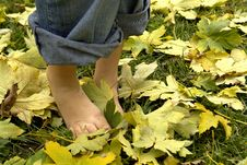 Free Resting Feet Stock Photography - 3485582