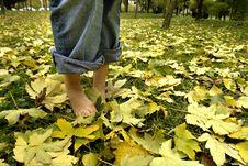 Free Resting Feet Stock Photos - 3485593