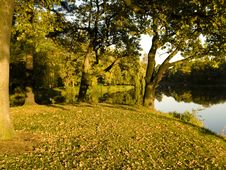 Free Autumn In Park Stock Photo - 3489450