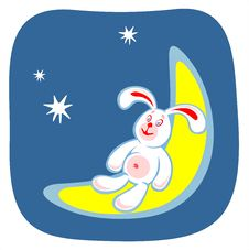 Rabbit And Moon Stock Photography