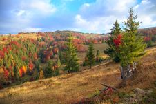 Colorful Autumn Sunset In The Mountains Stock Image