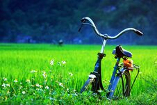 Free A Bicycle On Green Fields Stock Photo - 34807360