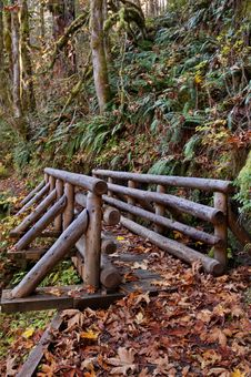 Free Wooden Bridge On Nature Trail Royalty Free Stock Image - 34833256