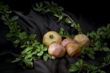 Free Autumn Stock Image - 34835921
