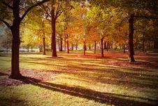Free Autumn Scene Royalty Free Stock Image - 34836226