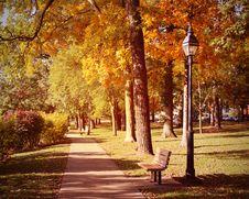 Free Autumn Scene Stock Photos - 34836243