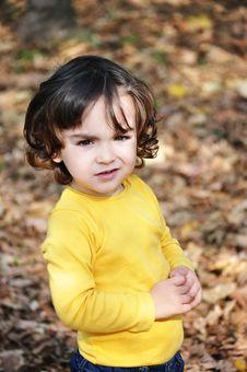 Free Little Boy In Autumn Park Stock Photo - 34850260