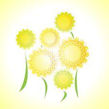 Free Flowers Yellow Stock Photo - 34855830