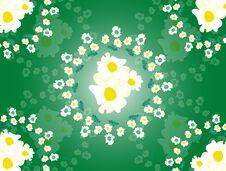 Free Flowers Yellow Stock Photos - 34856183