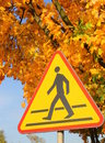 Free Road Sign - Beware Of Pedestrians. Stock Images - 34864474