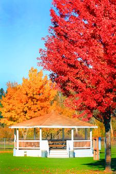 Free Bright Autumn Colors Stock Image - 34888531