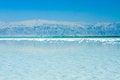 Free Beautiful Coast Of The Dead Sea Royalty Free Stock Photos - 34895358