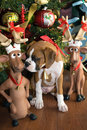 Free Reindeer Games II Stock Image - 3498961