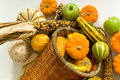 Free Cornucopia Stock Photography - 3499592