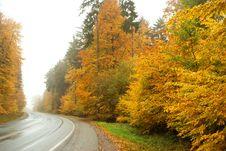 Free Autumn Stock Image - 3490121