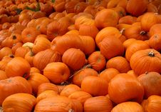 Free Mound Of Pumpkins Stock Images - 3490464