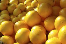 Free Oranges Stock Image - 3491221