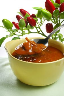 Free Homemade Vegetable Soup Stock Photography - 3491342