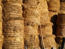 Free Hay Bales Royalty Free Stock Photography - 3491517