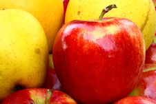 Free Apples Royalty Free Stock Photos - 3491808