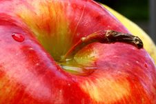 Waterdrops On Apple Stock Images