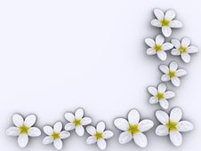 Free Flowers Frame Royalty Free Stock Images - 3492659