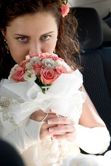 Free Beautiful Young Bride Royalty Free Stock Image - 3495176