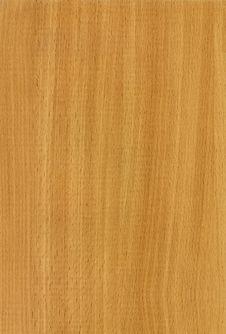 Free Wooden Beech Bavaria Texture Stock Photo - 3497750