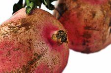 Free Pomegranates Stock Image - 3499611
