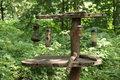 Free Bird Feeding Table. Stock Photos - 34917143