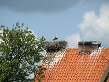 Free Stork Nest Stock Image - 34919251