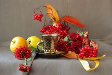 Free A Cup Of Coffee And Autumn Flowers Royalty Free Stock Photo - 34920225