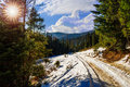 Free Snowy Road To Coniferous Forest In Mountains Stock Photos - 34931063