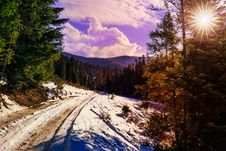 Free Snowy Road To Coniferous Forest In Mountains Royalty Free Stock Photography - 34931297