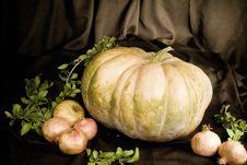 Free Autumn Stock Images - 34936324