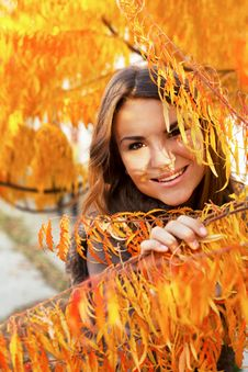 Free Beautiful Girl In Autumn Leaves Stock Images - 34939124