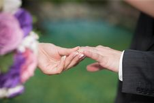 Free Groom And Bride Hands Stock Photos - 34939523